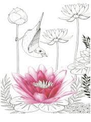vogelparadijs-kleurplaat-2